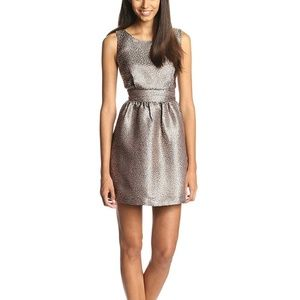 NWT Ark & Co Women's Metallic Fit and Flare Dress